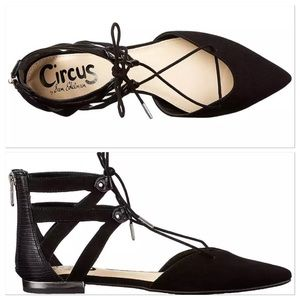 e45c7aa7b3af4d Circus by Sam Edelman Shoes - Circus by Sam Edelman Haven Pointed-Toe Flat